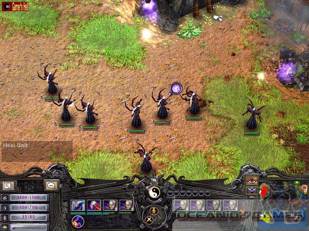 Battle Realms Features