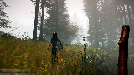 The Forest PC Game Free Download