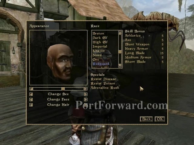 The-Elder-Scrolls-III-Morrowind-Free-Game-Setup