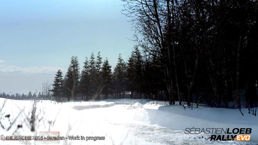 Sebastien Loeb Rally EVO Features