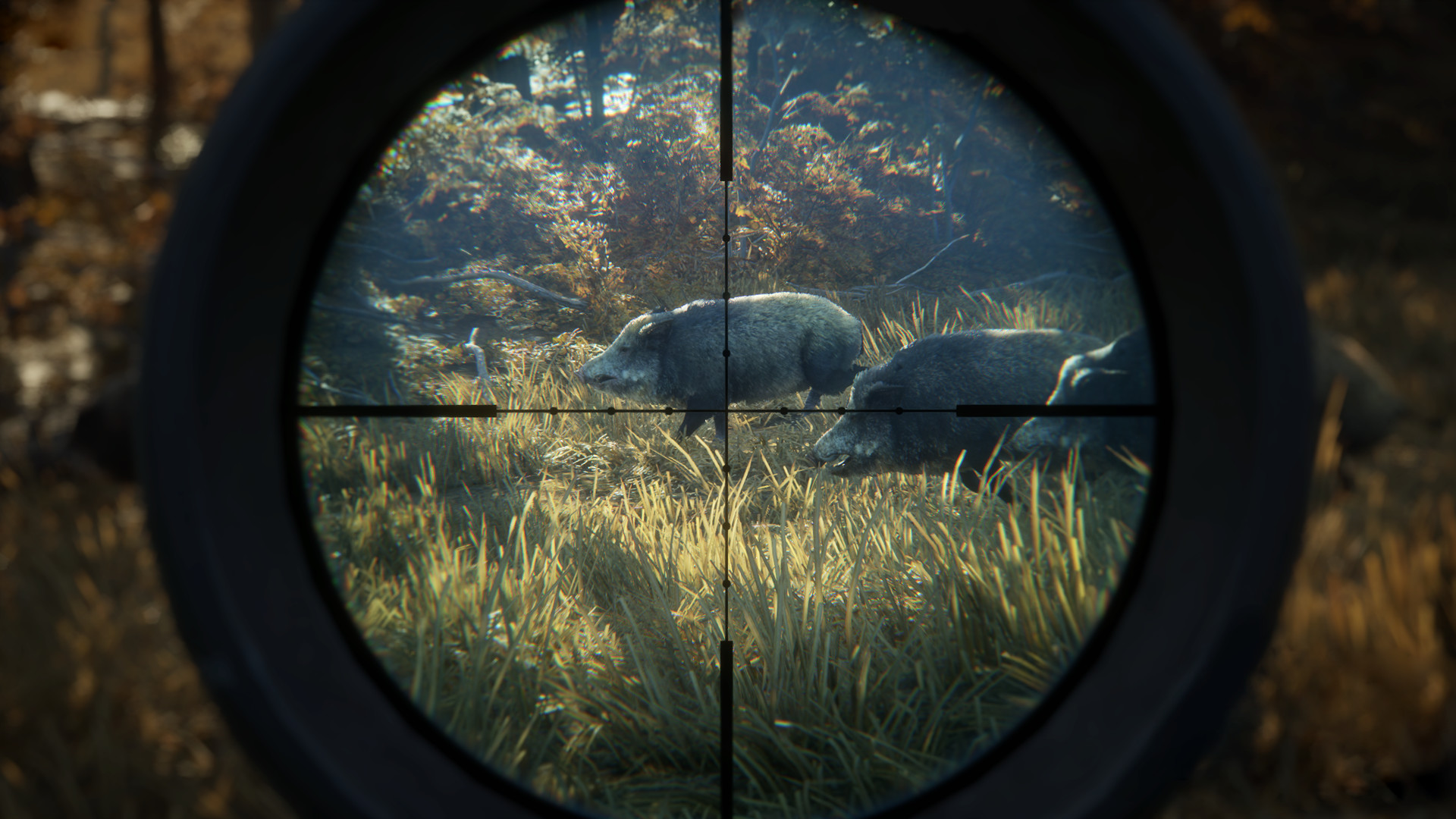 theHunter Call of the Wild Setup Free Download